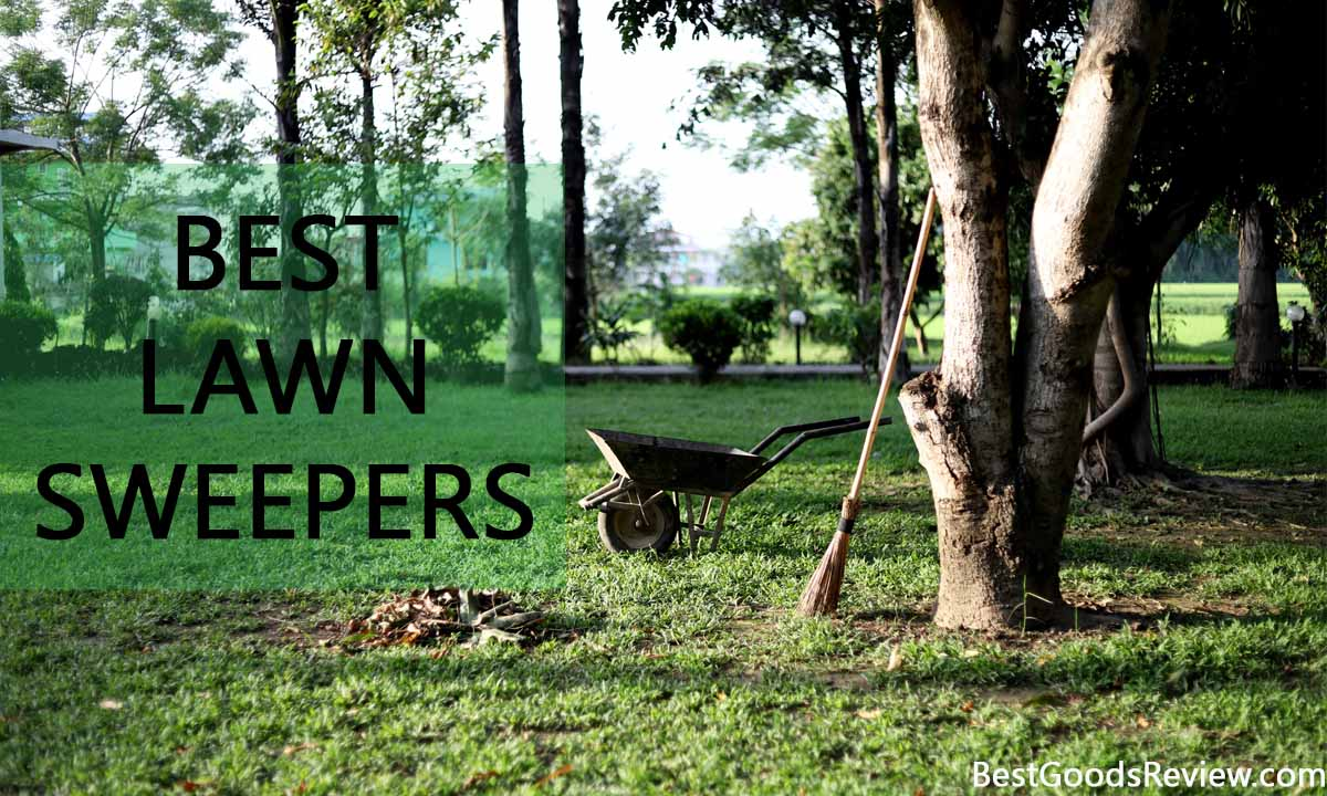 Best Lawn Sweeper Reviewed | Our Best Picks For You